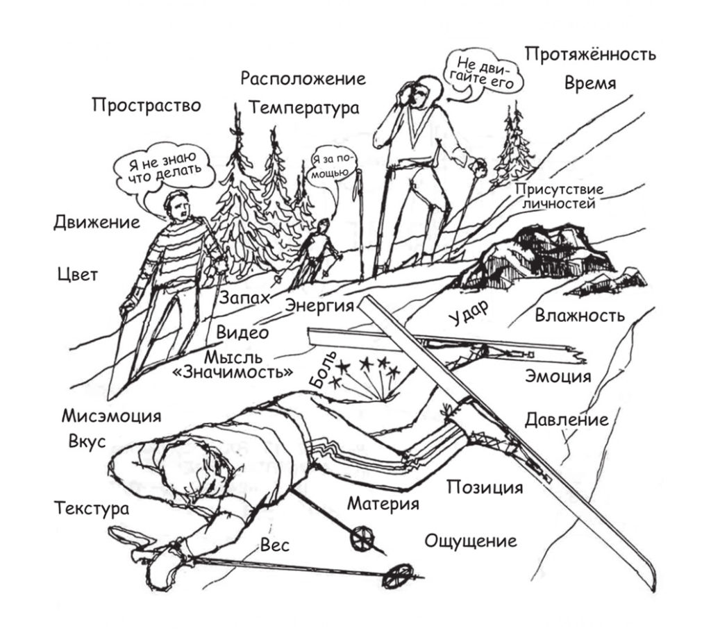 kak-pochistit-karmu-samostoyatelno-v-domashnih-usloviyah